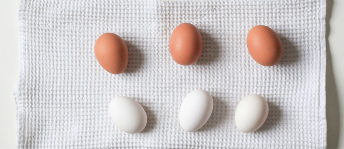 2 types of eggs to denote how group and individual health insurance plans differ